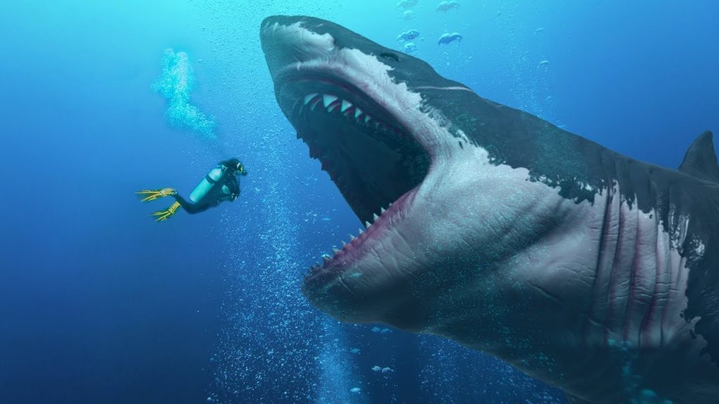 Dangerous animals in the world: Megalodon