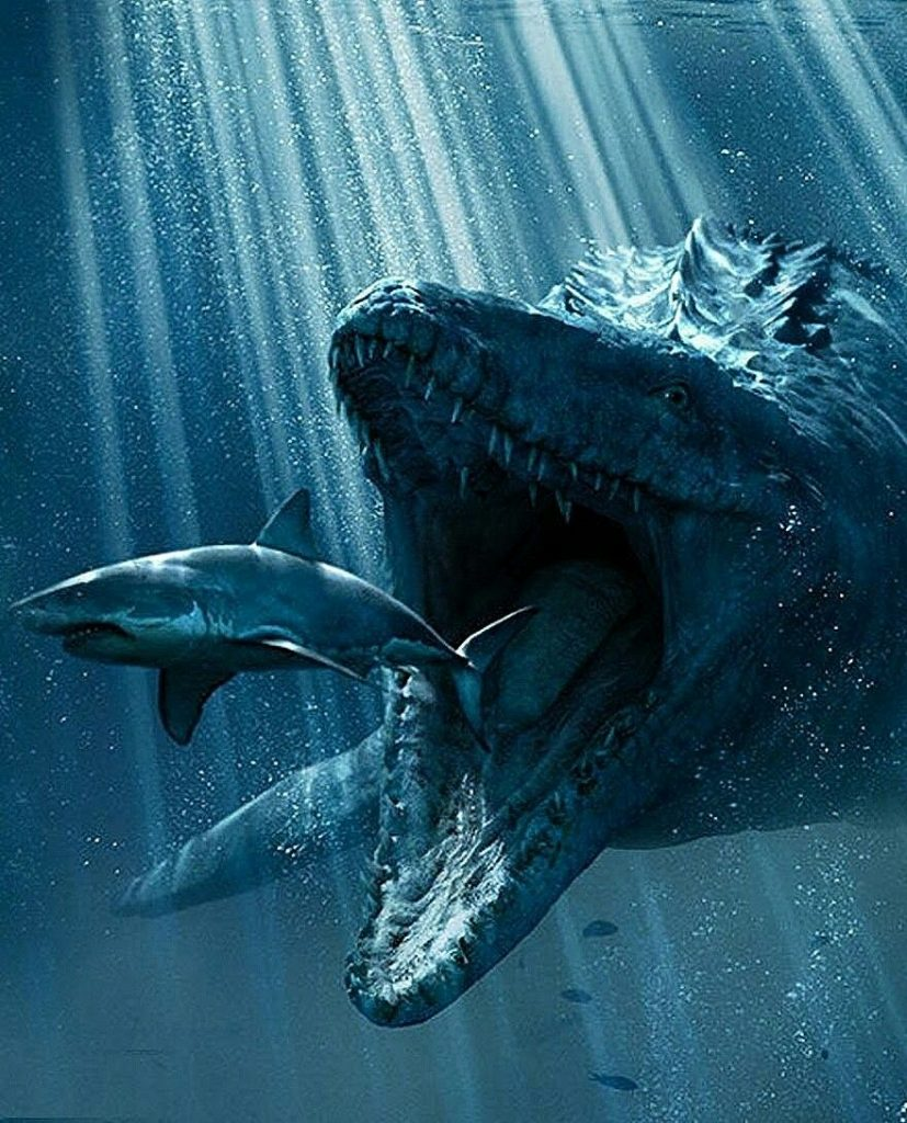Dangerous animals in the world: Mosasaurs
