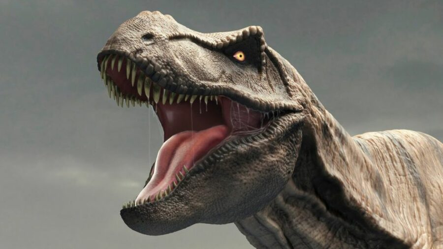 Dangerous animals in the world: Tyrannosaurus