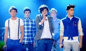 One direction Net worth, what is the Net worth of all the one direction boys?