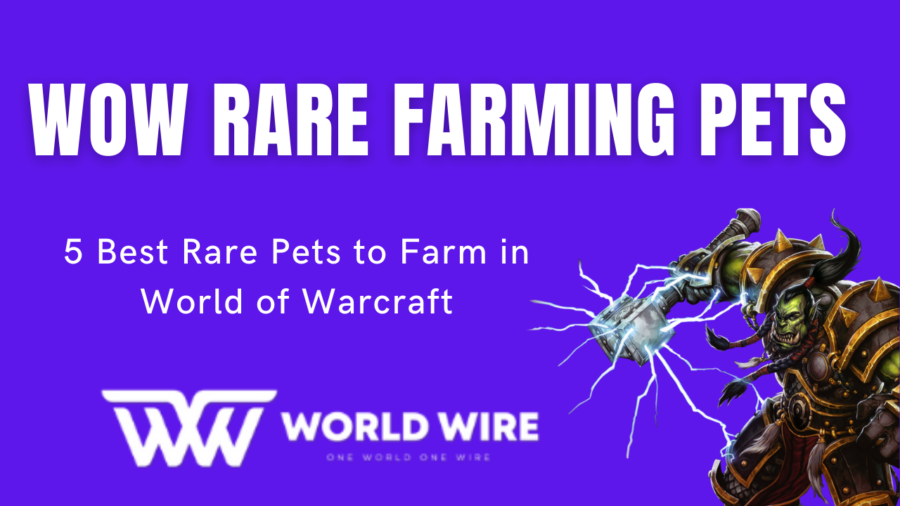 WOW Rare Farming Pets - 5 Best Rare Pets to Farm in World of Warcraft
